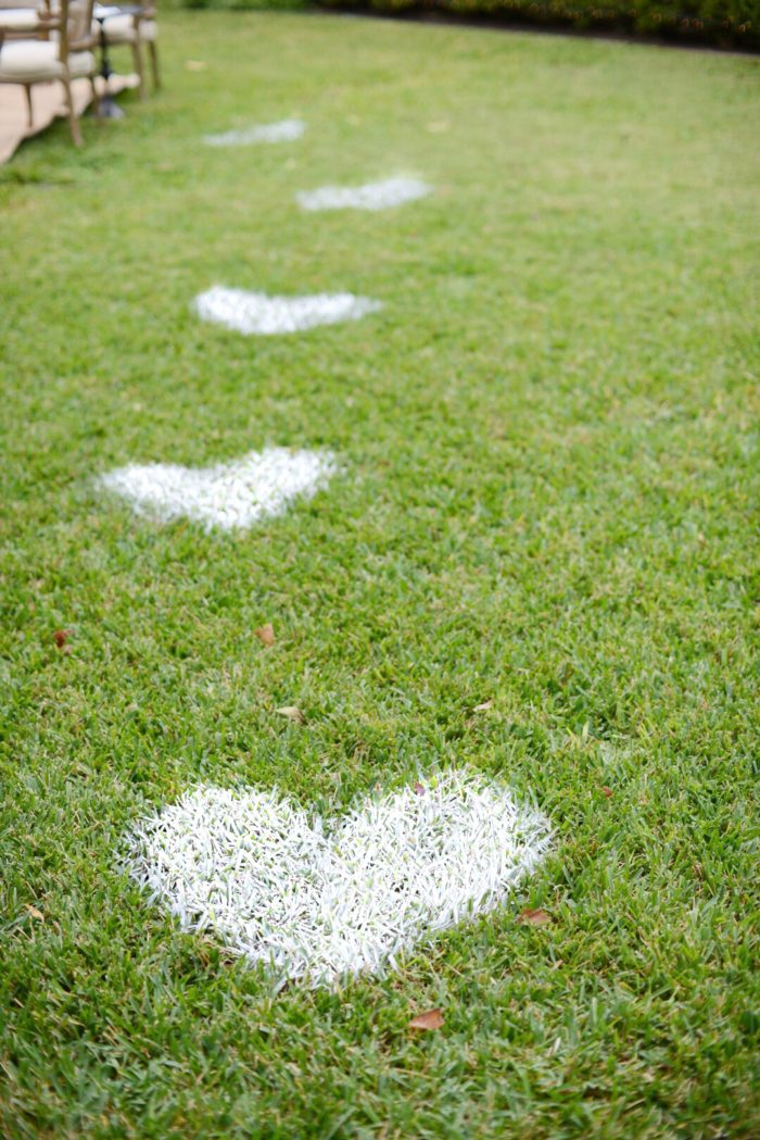 Hearts in Grass